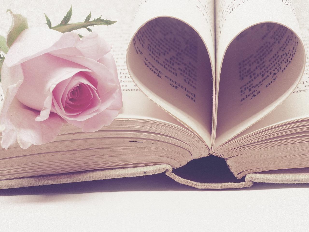 love books valentine
